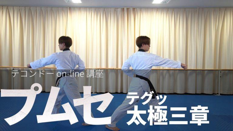プムセ編 太極(テグッ)三章 / 품새편 태극3장